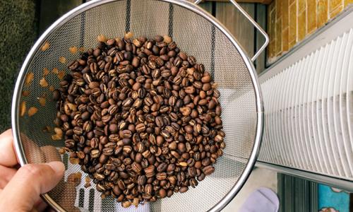 手烘咖啡DIY